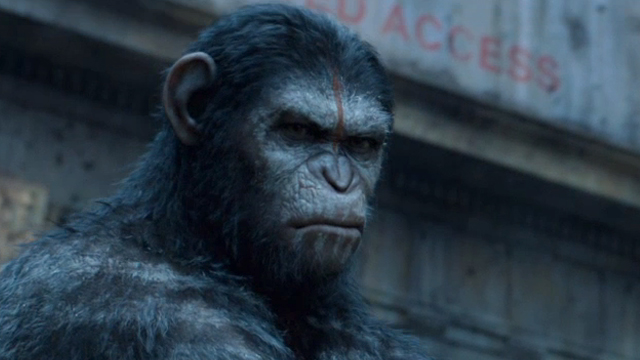 """""""War has begun"""" – Dawn of the Planet of the Apes Review ..."""