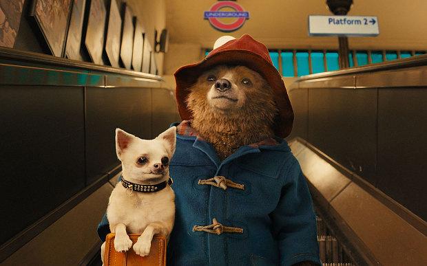 Paddington-bear