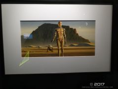 Star Wars Identities 25