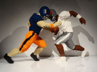The Art of the Brick (DC Superheroes) 55